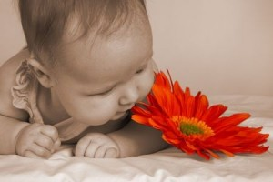 Baby next to a flower